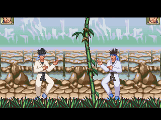 Ranma 1/2 Magical Sources Background for Mugen